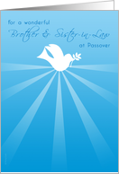 Brother and Sister-in-Law Passover Peace Dove with Olive Branch card