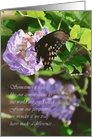 Lovely Butterfly Thank You for Volunteering card