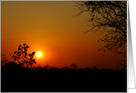 Sunset in Pemba, Africa card