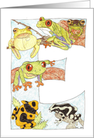 Frog Initial E card
