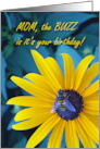 Buzzy Birthday for Mom, Honey Bee on Black-eyed Susan Flower card