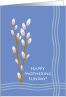 Mothering Sunday, Pussy Willows and Water Waves card