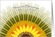 Shavuot Blessings for Grandfather, Barley Sun Design card