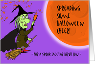 Halloween for Spooktacular Birth Son, Witch with Potion card