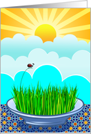 Norooz, Eid-eh Shoma Mobarak, Persian New Year, Sabzeh Wheatgrass card