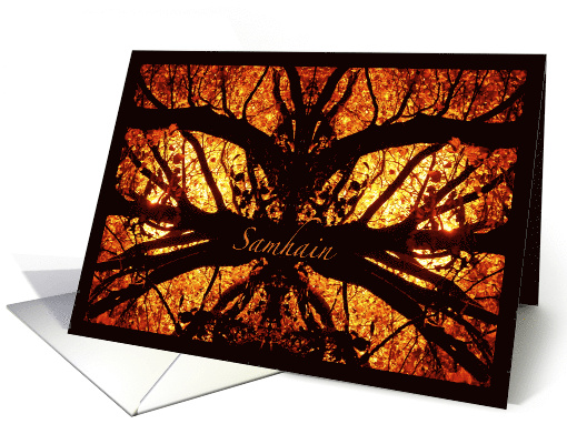 Samhain Spooky Tree, Celtic Halloween with Spider Like Branches card