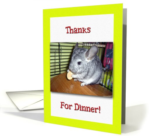 Thanks for Dinner Chinchilla Eating a Biscuit card (519983)