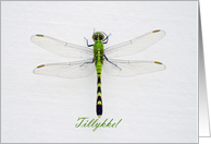 Green Dragonfly, Congratulations in Danish card