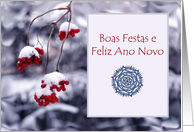 Merry Christmas in Portuguese, Red Berries in Snow card