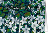Get Well in Spanish, White Flowers, Te Mejores Pronto card