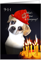Funny Over the Hill Birthday, Pug Mix With Flaming Candles card