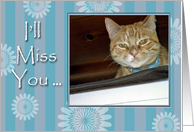 I'll Miss You, Striped Cat Says Goodbye card