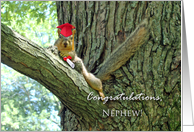 Congratulations for Nephew, Squirrel Graduation Picture card