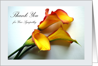Thank You for Sympathy, Calla Lily Flowers card