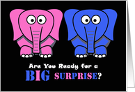 Baby Gender Reveal Party Invitation, Elephants card