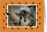 Howl-O-Ween for Sister, Howling Halloween Cat card