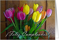 Happy Birthday in Spanish, Tulip Arrangement, Feliz Cumpleanos card