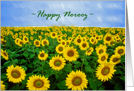 Happy Norooz, Field of Sunflowers with Blue Sky card