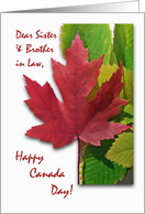 Canada Day for Sister and Brother in Law, Red Maple Leaf card