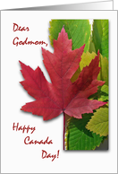 Canada Day for Godmom, Red Maple Leaf card