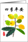Chinese New year, Loquat card