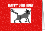 Special Royal Pet Cat Birthday card