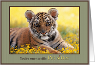 Thank You Pet Sitter Young Tiger Field of Yellow Flowers card