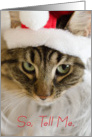 Santa Cat In Hat Naughty or Nice Christmas card