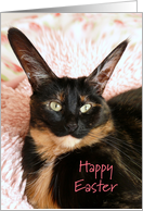 Big Eared Cat Happy Easter card