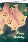 Vintage Foxgloves Birthday card