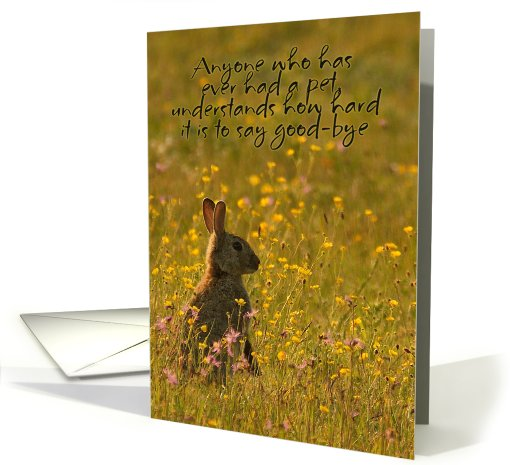 Pet Sympathy Card - Loss Of Pet Rabbit card (649828)