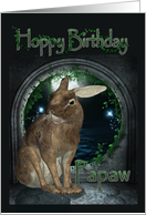 Papaw Birthday Card - Hoppy Birthday With Rabbit card