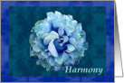 Harmony with watercolor rose card
