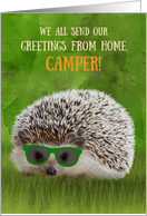 From All Greetings Camper Summer Camp Hedgehog Cool Sunglasses Vibe card