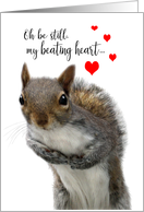 Valentine's Day Cute Love Struck Squirrel Be Still my Beating Heart card