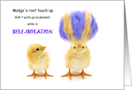 Coronavirus Self-Isolation Humor Hair Color Gone Wrong card