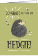 Congratulations on your New Pet Hedgie! Cute Whimsical Hedgehog Green card
