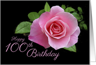 Happy 100th Birthday Classic Pink Rose Scrolls on Black card