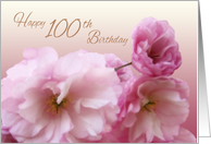 Happy 100th Birthday Pink Cherry Blossoms card