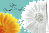 Happy Nurses Week Gerbera daisy card