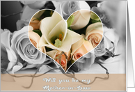 Will you be my Mother-in-Law card