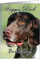 Happy 52nd Birthday German Shorthaired pointer dog card