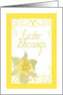 Easter Blessings - Yellow Daffodil card