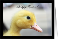 Happy Easter Yellow Duckling card