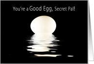 Encouragment, My Secret Pal, Single Egg and Reflections, Concept card