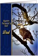Father's Day - Dad - Bald Eagle - Nature card