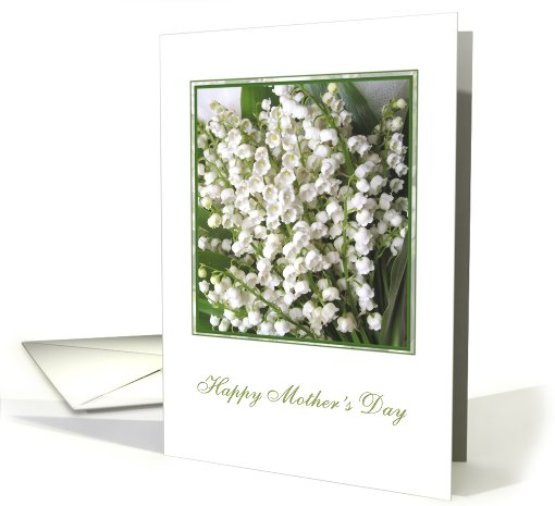 Mother's day card with Lily of the valley flowers. card (582635)