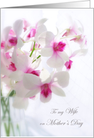 Mother's day. Wife - white orchids card