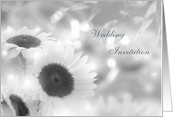 Wedding Invitation Card - silver-white sunflowers. card