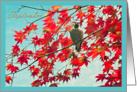 Happy Birthday born in September, bird in red autumn leaves photography card